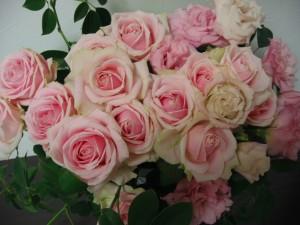 20151105 今週のお花