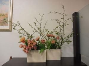 20160115 今週のお花