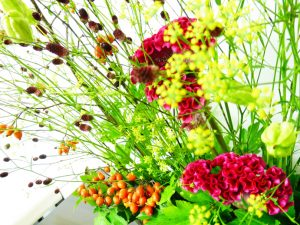 20160915 今週のお花